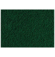 Dark Green Ground Cover