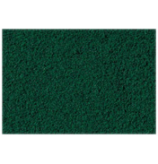 Conifer Green Turf