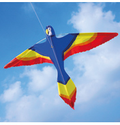Brookite Parrot Kite