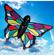 Brookite Tropical Butterfly 3D Kite