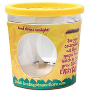 Insect Lore Caterpillar Refill Certificate (for 5…