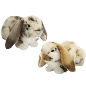 Dutch Lop Eared Rabbit Plush