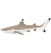 Marine Life Blacktip Shark Figure