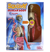 Squishy Human Body